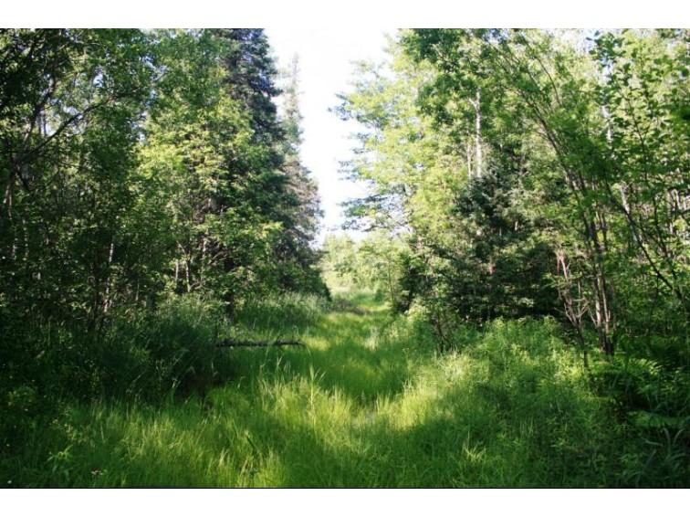 Tbd Hwy 2 S22,223,27 Marenisco, MI 49947 by First Weber Real Estate $143,950