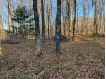 On Sand Cove Pointe Rd, Eisenstein, WI by Birchland Realty, Inc - Park Falls $29,900