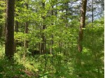 Lot 43 Norway Pine Tr, Wilson, WI by Lakeplace.com - Vacationland Properties $37,100