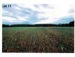 Lot 11 The Clearings, Kohler, WI by Village Realty & Development $102,700
