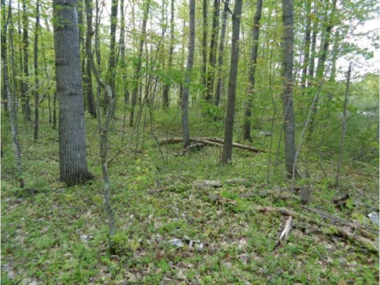 Hedgewood Court, Abrams, WI by Boss Realty, LLC $38,900
