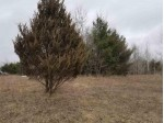N Lake Ridge Road, Wautoma, WI by First Weber Real Estate $14,000