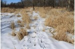 Hwy S, Hortonville, WI by Whitetail Properties Real Estate, LLC $599,000
