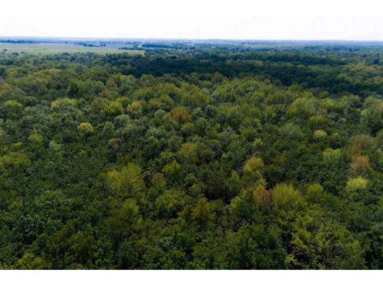 Hwy 96, Dale, WI by Antler Acre Properties $235,000
