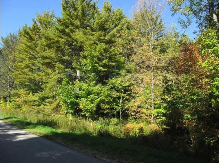 TBD Co Rd 440, Manistique, MI by Grover Real Estate $32,500