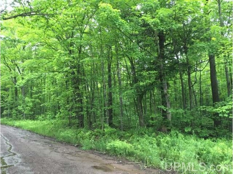 OFF M64 Marenisco, MI 49947 by First Weber Real Estate $24,000
