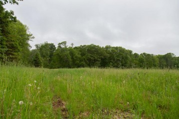 29.44 Acre North Star Rd, Sheboygan Falls, WI 53083-0000