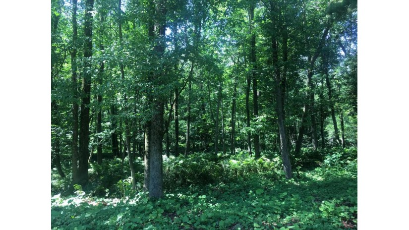 1.004 Acre S 12th St Sheboygan, WI 53081-0000 by Pleasant View Realty, LLC $75,000