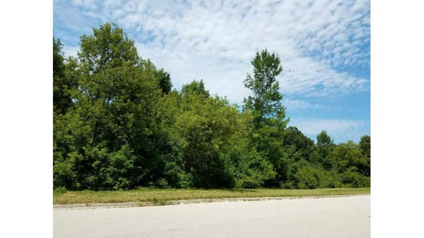 1132 Lisa Ln New Holstein, WI 53062-0001 by Pleasant View Realty, LLC $20,000