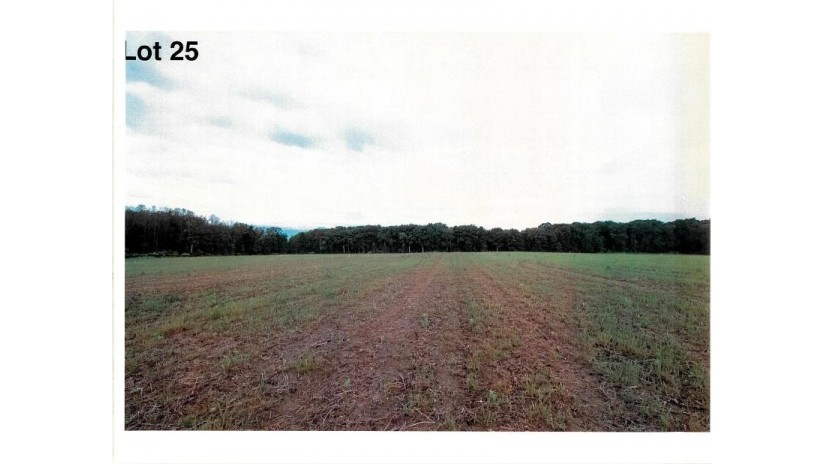 Lot 25 The Clearings Kohler, WI 53044 by Village Realty & Development $89,100