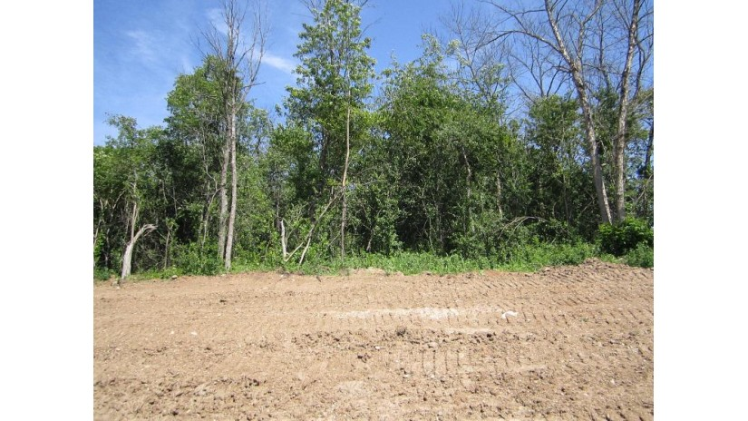 LT1 Harvest Hills Subdivision Germantown, WI 53022 by Realty Executives - Elite $129,900