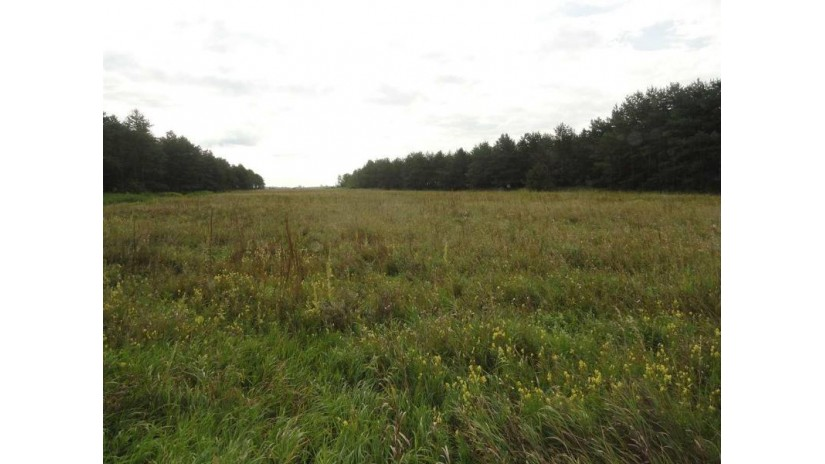 197 acres Evergreen Avenue Wisconsin Rapids, WI 54494 by Re/Max Central $679,650