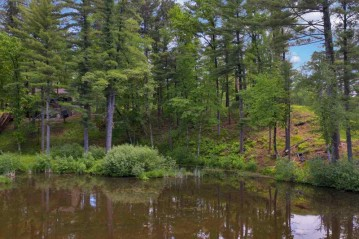 Lot 63 Fly Rod Trail, Wisconsin Rapids, WI 54494