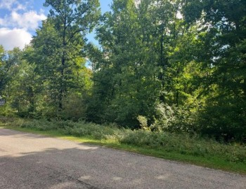Lot 17 Timber Shores Drive, Stevens Point, WI 54481