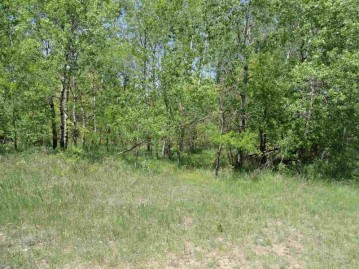 2.03 acres Ray Art Road Lot 10, Iola, WI 54945