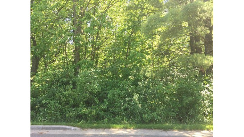 607 Roberts Street Lot 2 Spencer, WI 54479 by Coldwell Banker Brenizer $15,900