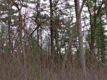 Lot 58 Fly Rod Trail, Wisconsin Rapids, WI 54494