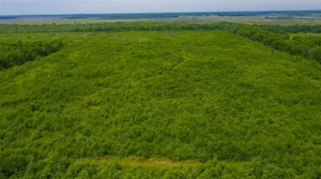 112.3 Acres MOL Marsh Road, Wisconsin Rapids, WI 54495