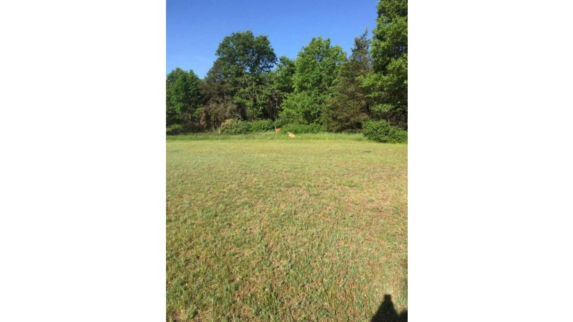 Lot 27 Landcaster Road Village Wood Mead Plover, WI 54467 by First Weber $44,900