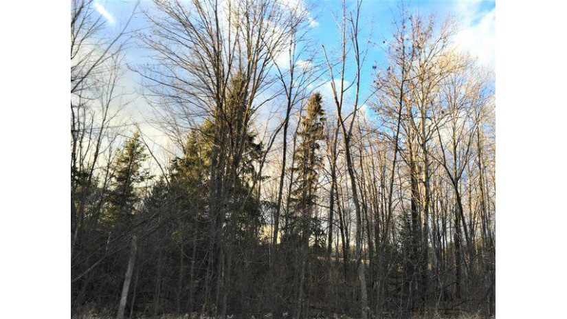 42.34 Acres County Road N Wausau, WI 54401 by Re/Max Excel $399,900