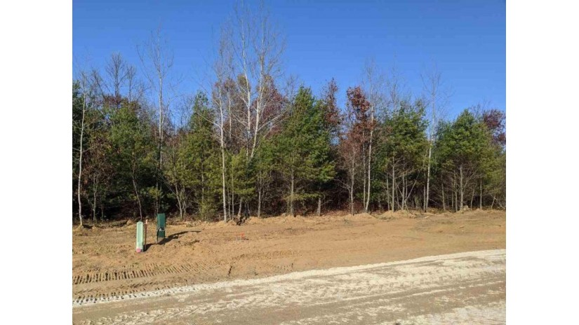 608 Briarwood Way Lot 57 Plover, WI 54467 by Classic Realty, Llc $51,900