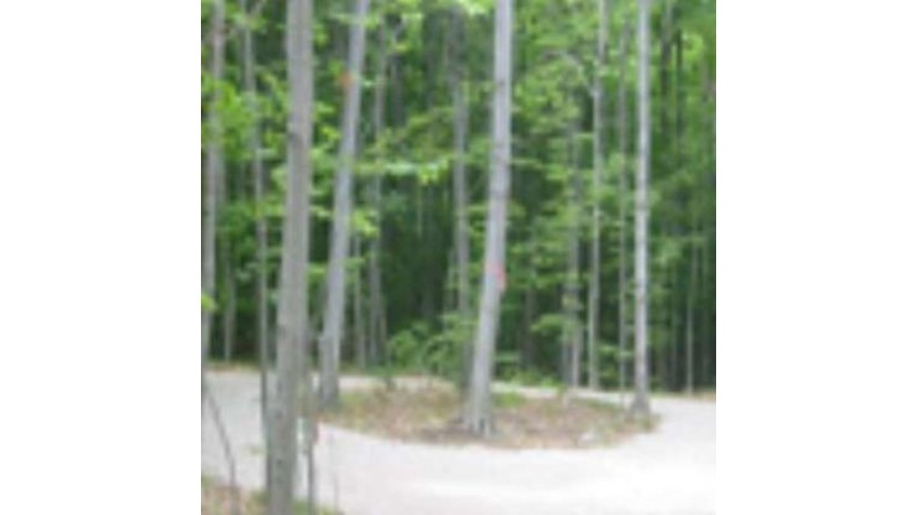 Garrett Bay Rd Ellison Bay, WI 54210 by Northland Capital Llc $74,900
