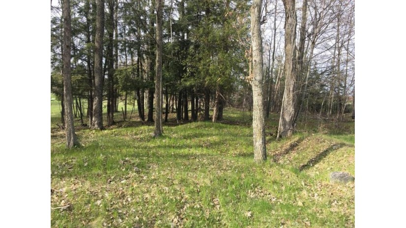Lot 1 Deer Track Rd Brussels, WI 54204 by Era Starr Realty $24,900