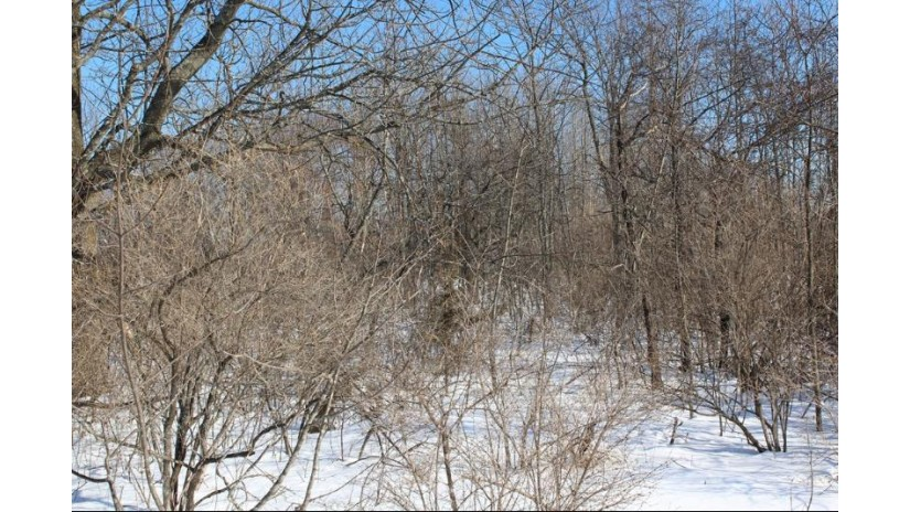 Lot #22 Brooks Ln Egg Harbor, WI 54209 by True North Real Estate Llc $109,000