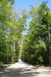 Starlight Woods Ln, Town Of Liberty Grov, WI 54210