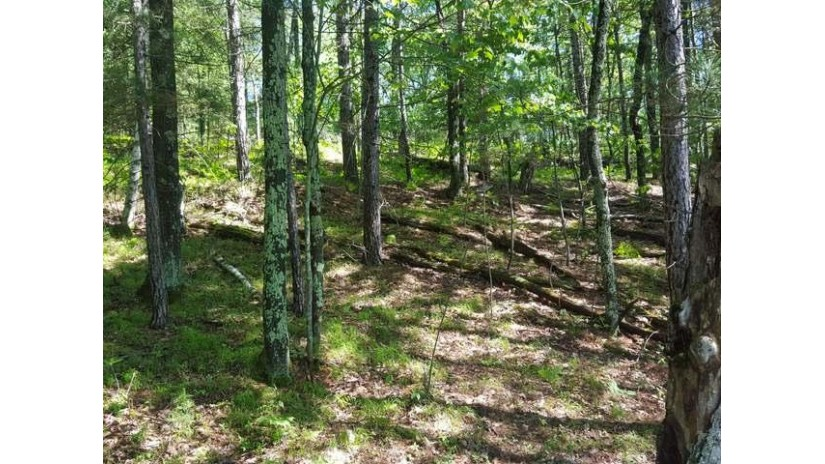 OFF Jacoby Rd Conover, WI 54519 by Re/Max Property Pros $599,000