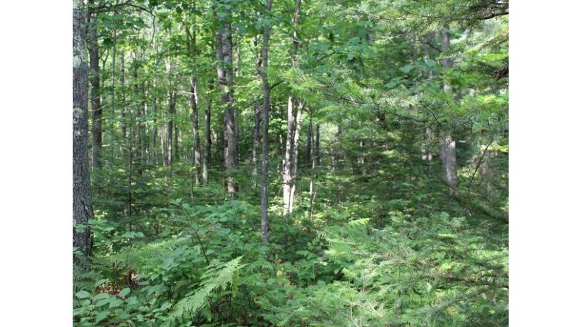 On Birch Lake Rd Lot 3 Watersmeet, MI 49969 by Century 21 Burkett - Lol $85,000