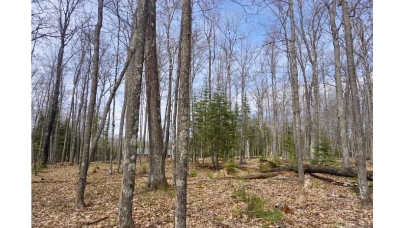 On Birch Tree Ln Lot 52 St. Germain, WI 54558 by Century 21 Burkett & Assoc. $36,900