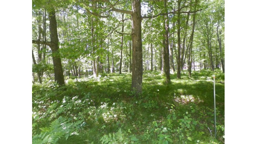 On Cameron Dr Lot 42 Minocqua, WI 54548 by Coldwell Banker Mulleady - Mnq $12,900