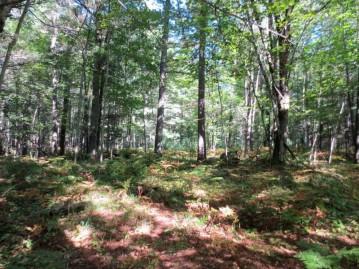 3668 Sterling Dr Lot 10, Crescent, WI 54501