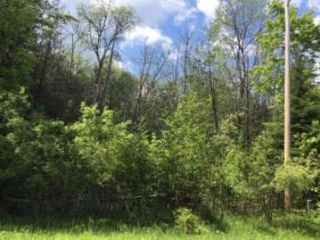 On Cove Ridge Dr Lot 1, Norwood, WI 54409