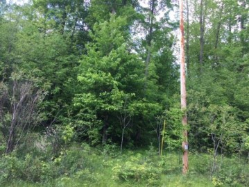 On Cove Ridge Dr Lot 3, Norwood, WI 54409