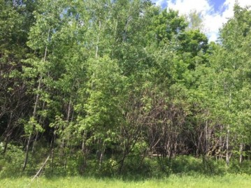 On Cove Ridge Dr Lot 4, Norwood, WI 54409