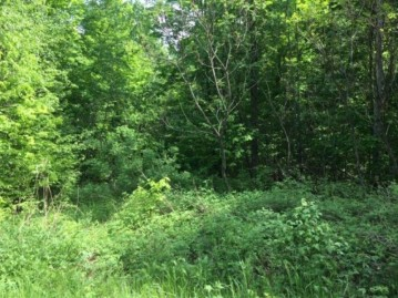 On Cove Ridge Dr Lot 7, Norwood, WI 54409