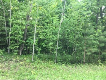 On Cove Ridge Dr Lot 8, Norwood, WI 54409
