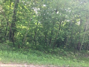 On Cove Ridge Dr Lot 9, Norwood, WI 54409