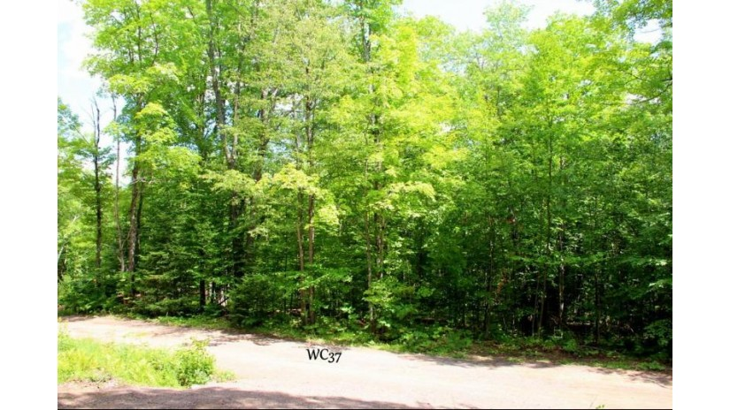 Lot 37 Alpine Dr Anderson, WI 54565 by First Weber - Minocqua $24,900