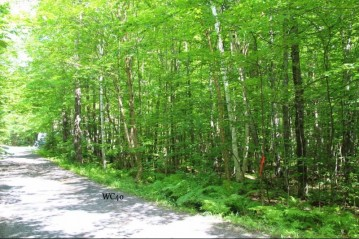 LOT 40 Alpine Dr, Anderson, WI 54565