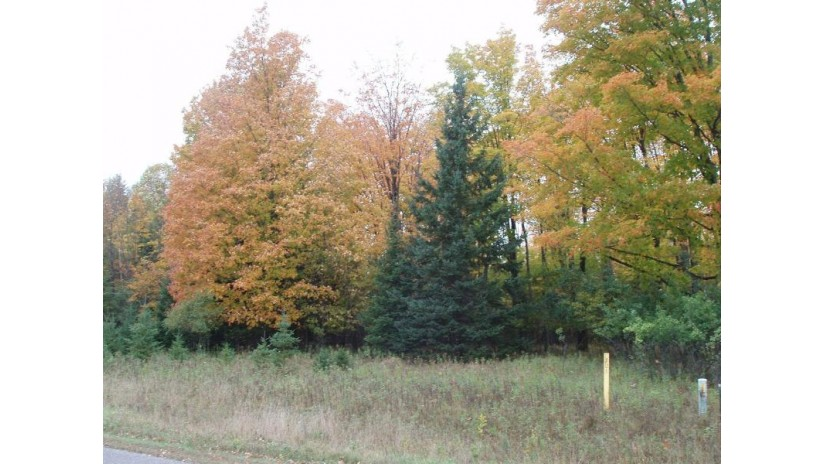 LOT 16 Margaret Ln Lake, WI 54552 by Birchland Realty, Inc - Park Falls $19,900