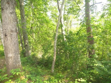 Lot 28 Big Thunder Ln, Lac Du Flambeau, WI 54538