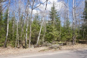 Parcel A Forest Ln, Pine Lake, WI 54501