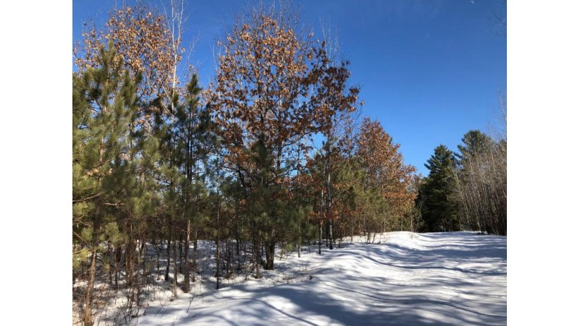 24 ACRES Manhardt Rd Minocqua, WI 54548 by Lakeland Realty $62,900