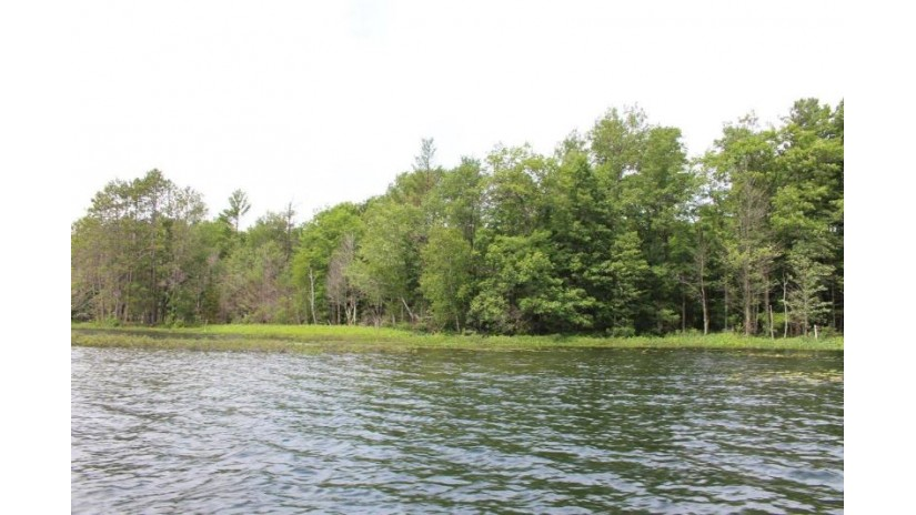 On Squirrel Lake Rd W Minocqua, WI 54548 by Coldwell Banker Mulleady - Mnq $129,900