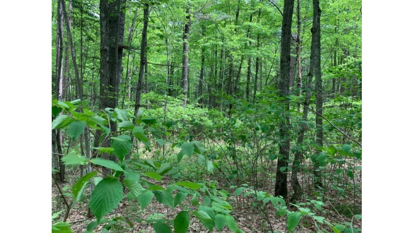 Lot 4 Somo Ridge Dr Wilson, WI 54568 by Lakeplace.com - Vacationland Properties $46,400