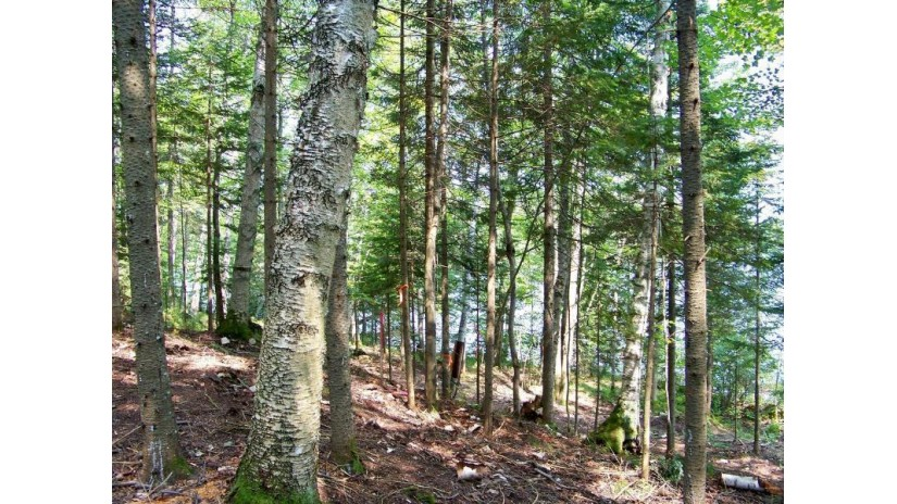 10794 Gladys Rd Presque Isle, WI 54557 by Headwaters Real Estate $199,900