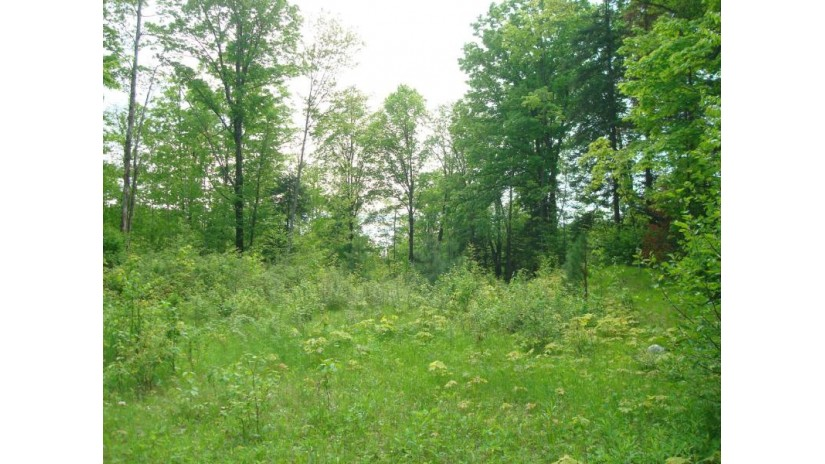 On Velvet Lake Rd Newbold, WI 54501 by First Weber - Rhinelander $231,058